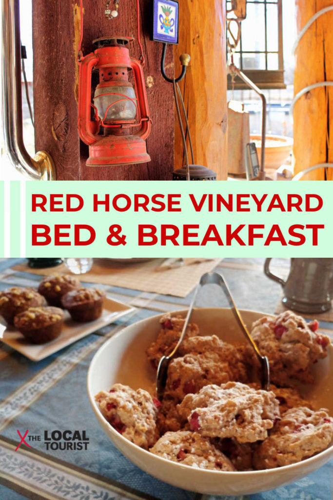 When you're visiting Albuquerque, New Mexico, skip the hotels and book a room at this delightful bed and breakfast.