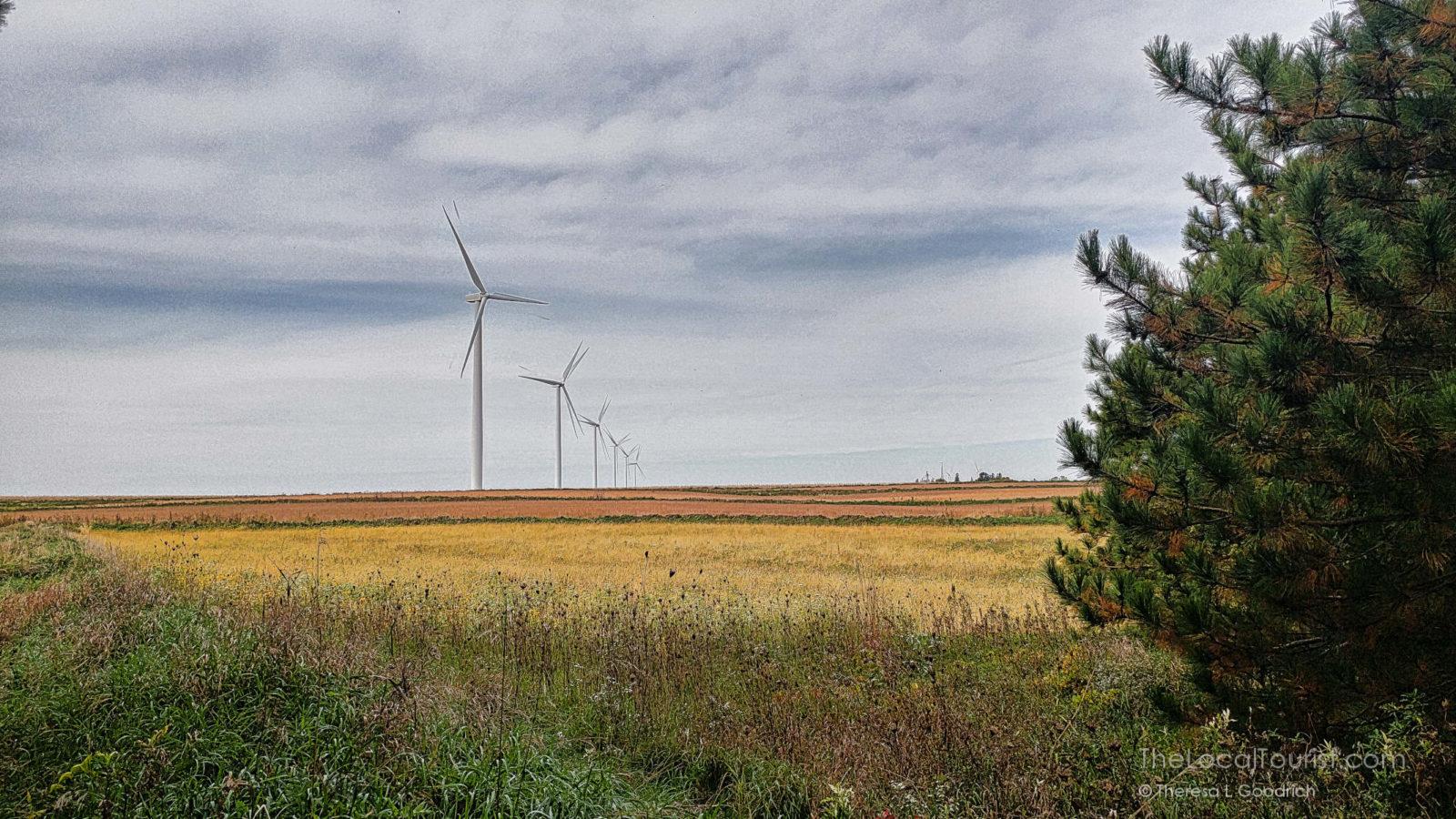 Windmills in Iowa on Bill Fluhrer's farm