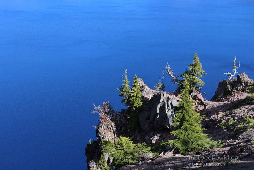 Bright green evergreens contrasted with the deep blue of Crater Lake