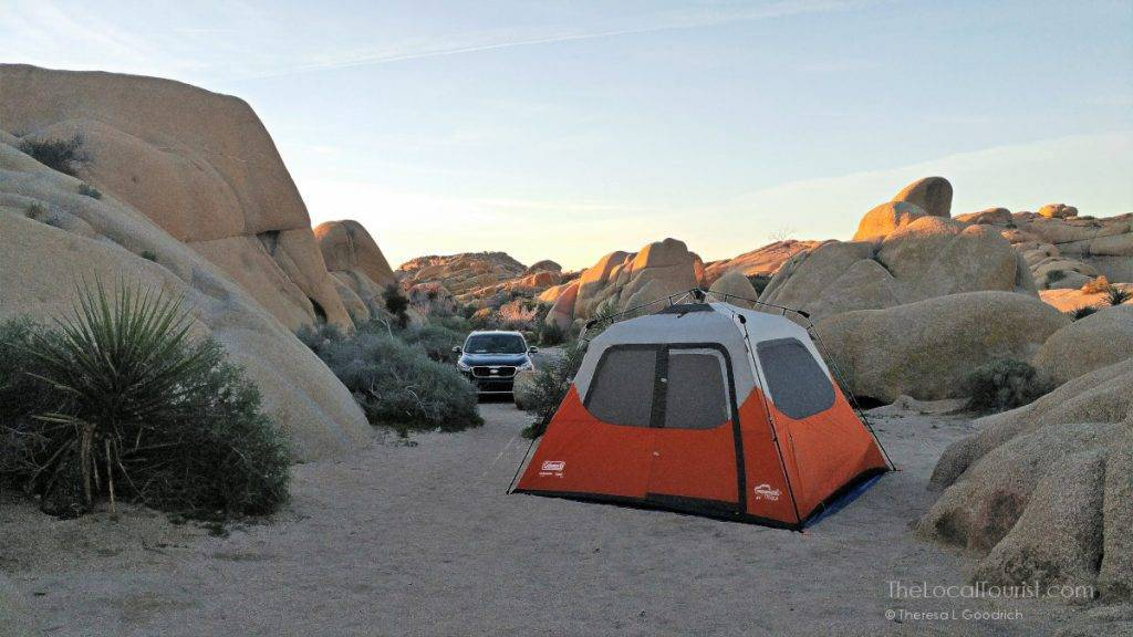 Best campground ever at Joshua Tree National Park