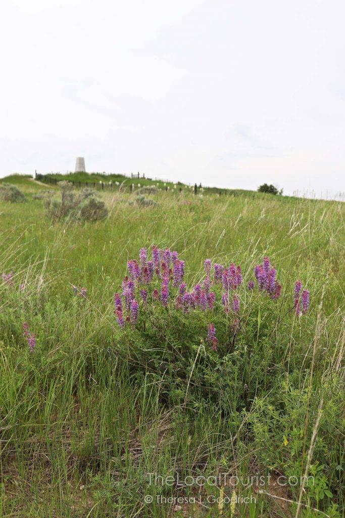 Little Bighorn Battlefield Monument