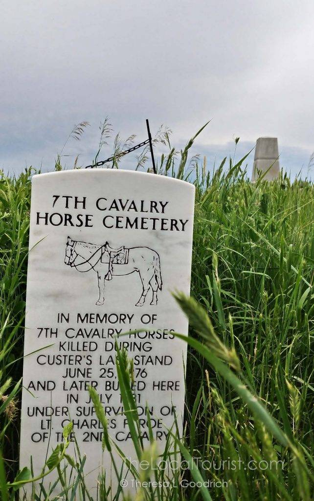 Grave markers for the horses at Little Bighorn