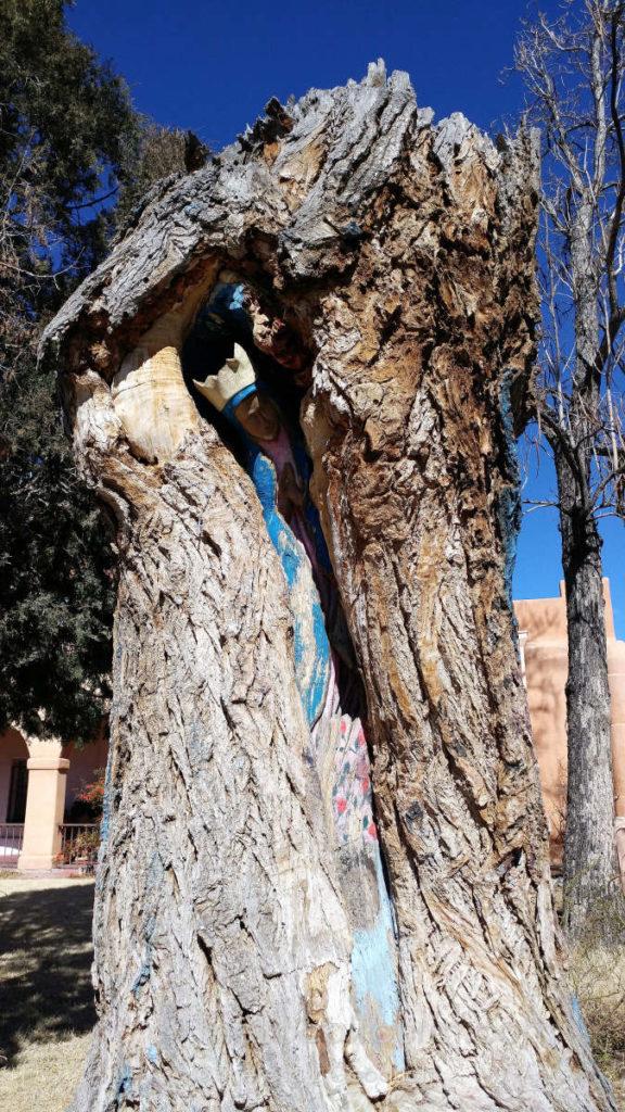 Sculpture inside a tree at San Felipe de Neri in Old Town Albuquerque