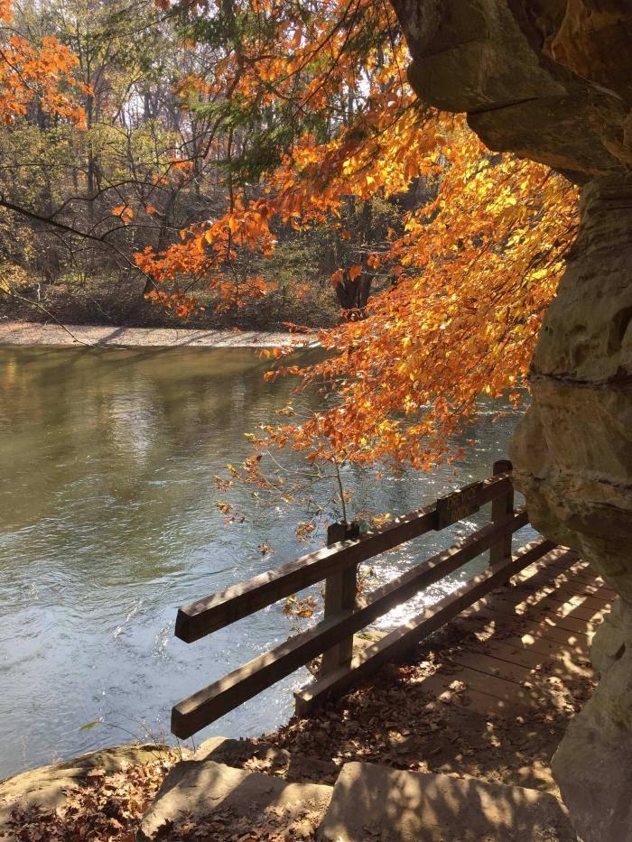 Path along Sugar Creek on Trail #3