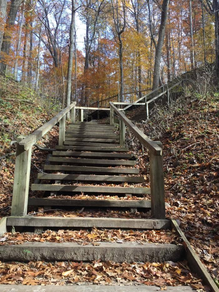 Staircase through Trail #3