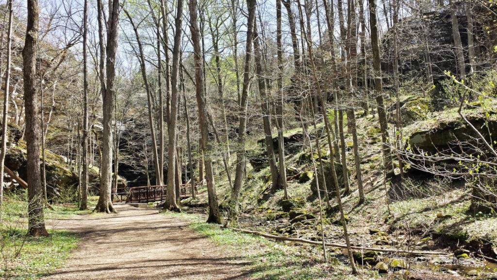 Hiking trail at Ferne Clyffe State Park in the Shawnee National Forest