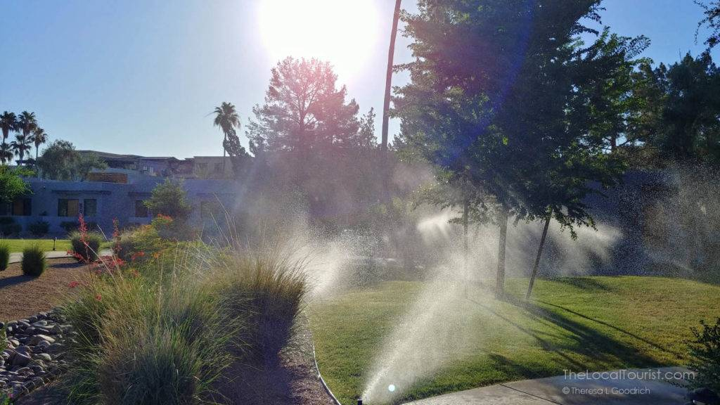 Early morning at Andaz Resort