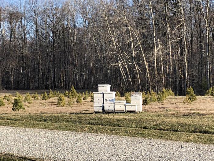 Hunter's Honey Farm - Cindy Ladage, Traveling Adventures of a Farm Girl