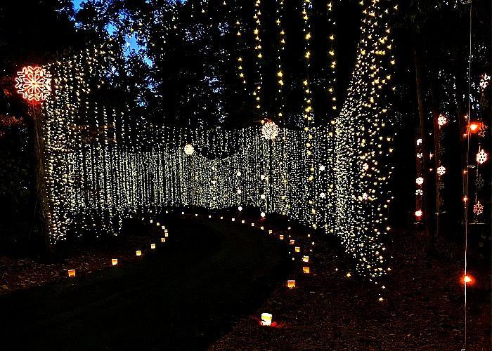 Huntsville, AL Christmas - Michelle Marine