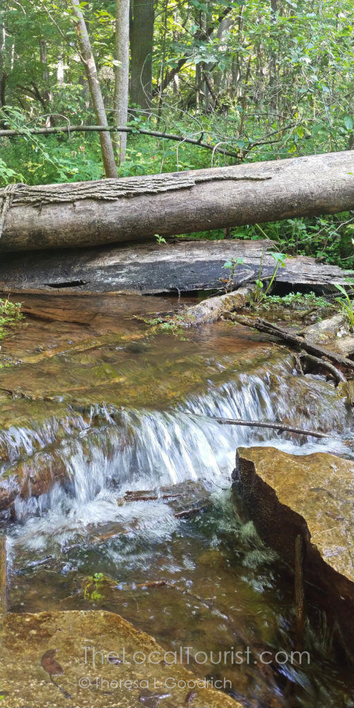 Small waterfall in Fox Bluff Conservation Area