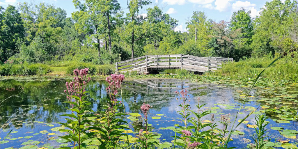 Gorgeous pond with lily pads and picturesque bridge at Fel-Pro RRR