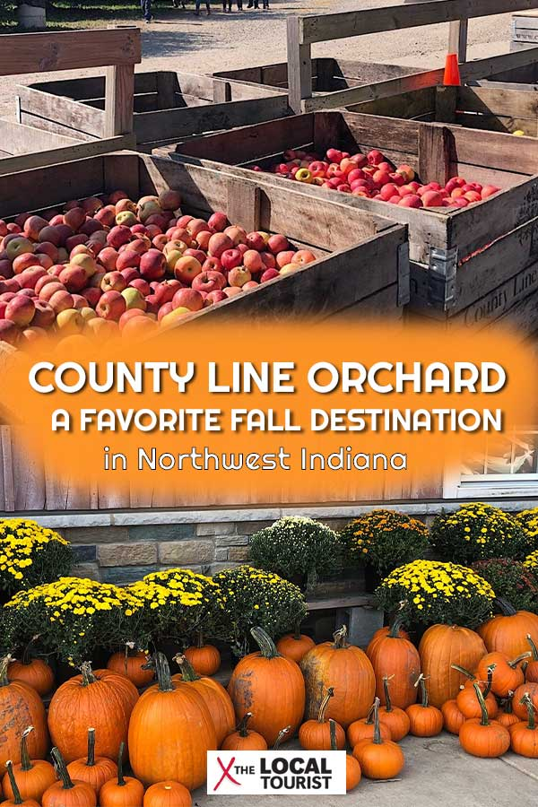 County Line Orchard in Northwest Indiana is a fun Fall destination. Visit to pick pumpkins and apples and don't miss the doughnuts! Get all the details on what it's like to visit this fall destination. Fun things to do in Indiana. Fall in Indiana.