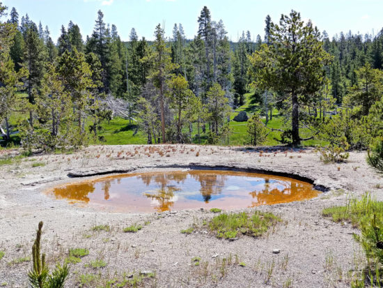 Thermal pool at Yellowstone National Park