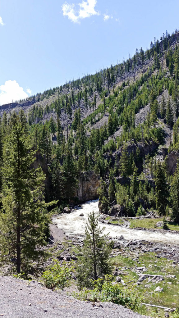 Firehole River and Firehole Canyon Drive