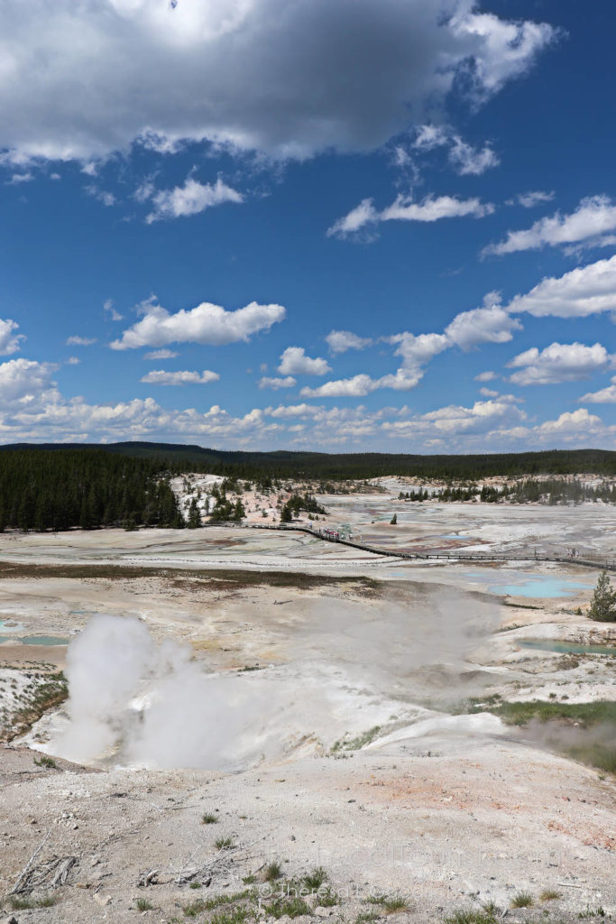 Porcelain Basin in Yellowstone - you can see why it's been given that name!
