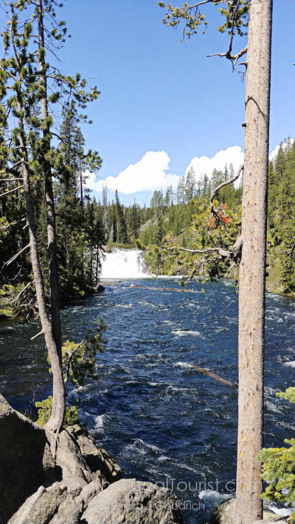 Lewis Falls, our last stop in Yellowstone National Park
