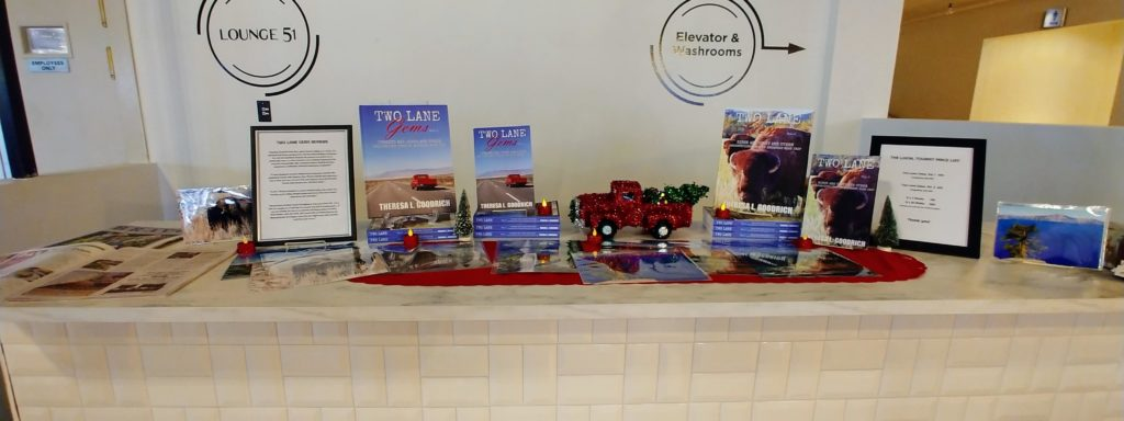 Oodles of counter space for my display at Dream Hall in Elgin, Illinois