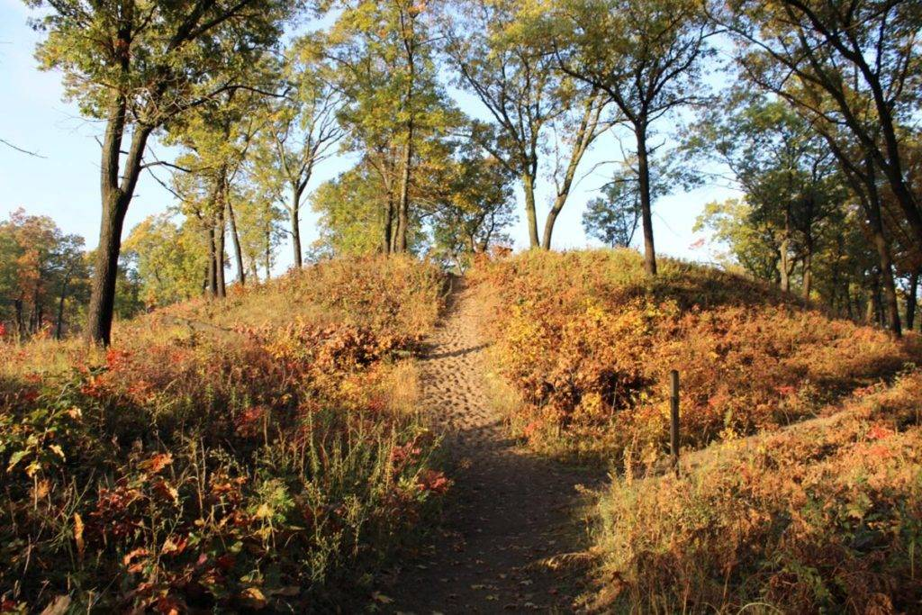 Paul H. Douglas Trail at Indiana Dunes National Park
